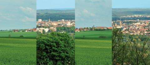 Agglomération messine : les secteurs porteurs pour l'économie du territoire